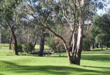 3 things to consider when choosing aged care facilities in Heathmont, Victoria   Aged Care Weekly