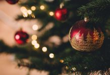 Minister for Senior Australians and Aged Care's Christmas Message | Aged Care Weekly