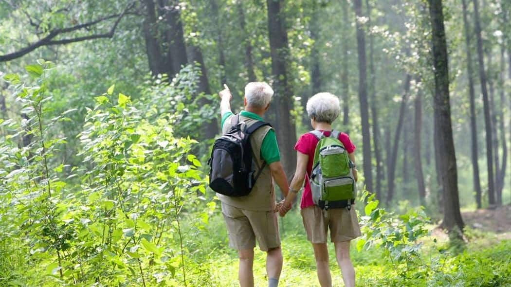 Activities that are best retirement gifts Retirement Gift Ideas   Aged Care Weekly