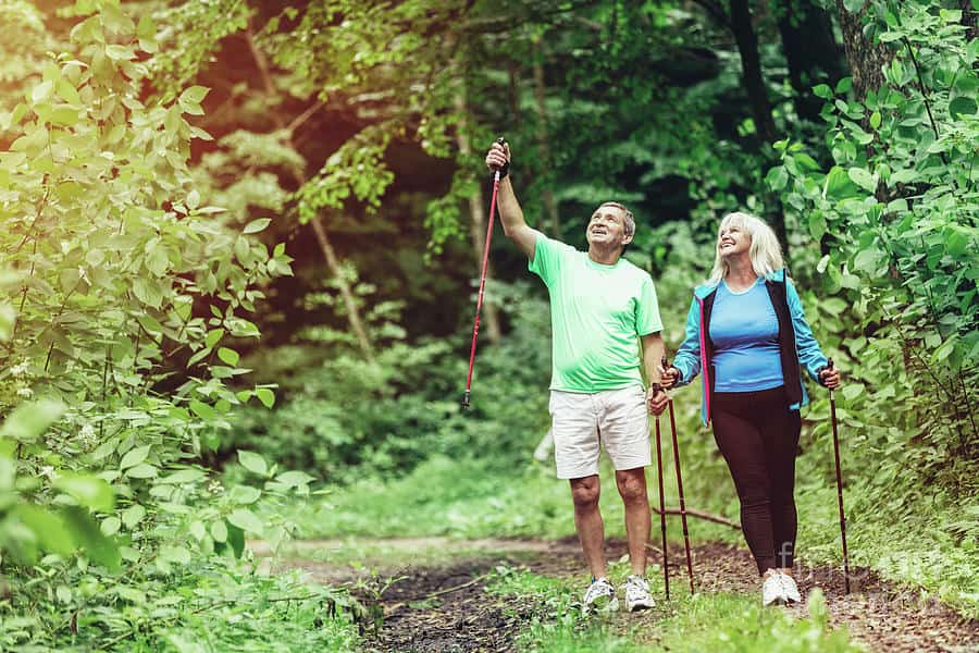 Go on nature trips Happy Retirement   Aged Care Weekly