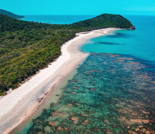 How to experience the Daintree Rainforest in Cape Trbulation